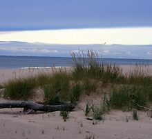 Fall on Lake Michigan 4 by Chris Coates
