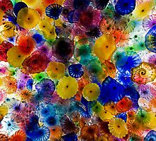 Glass Shells by Paulie-W