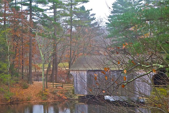 Covered Bridge and Pond by John Butler