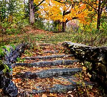Stairway To Heaven by Don  Powers