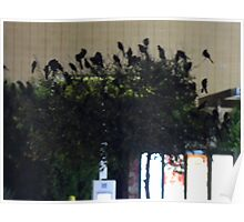 Grackle Decorated Tree Poster