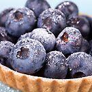 blueberries by Vilma Bechelli