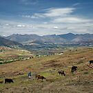 Lesotho Rancher by Edward Perry