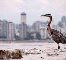 Guarding Vancouver by James Wheeler