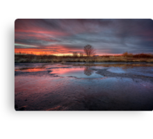 Swamp Symphony Canvas Print