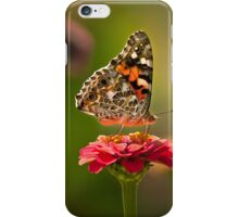 Painted Lady's summer profile iPhone Case/Skin