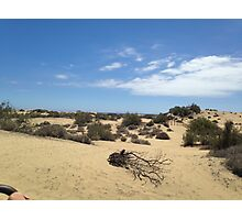 Sand Dunes of Maspalomas Photographic Print