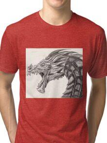 Alduin Tri-blend T-Shirt