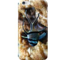 Exotique iPhone Case/Skin