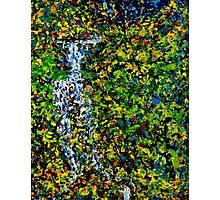 Confetti Waterfall by Florida Artist John E Metcalfe Photographic Print