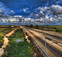 a majestic springtime in Israel by Ronsho