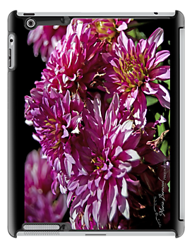 Dahlias - - Cards, iPhone & iPad Cases by Maria A. Barnowl