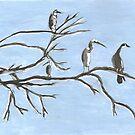 Birds at St George by David Fraser