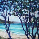 Seal Rocks, NSW mid north coast by Terri Maddock