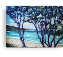 Seal Rocks, NSW mid north coast Canvas Print