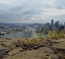 Pittsburgh Rock by wjwphotography