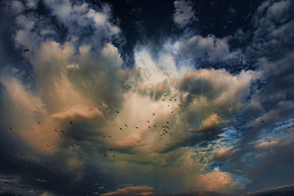 Cloud 20121111-73 by Carolyn  Fletcher