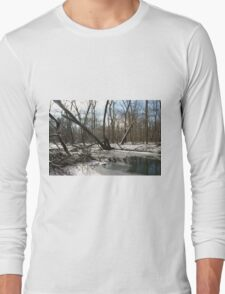 fading winter Long Sleeve T-Shirt