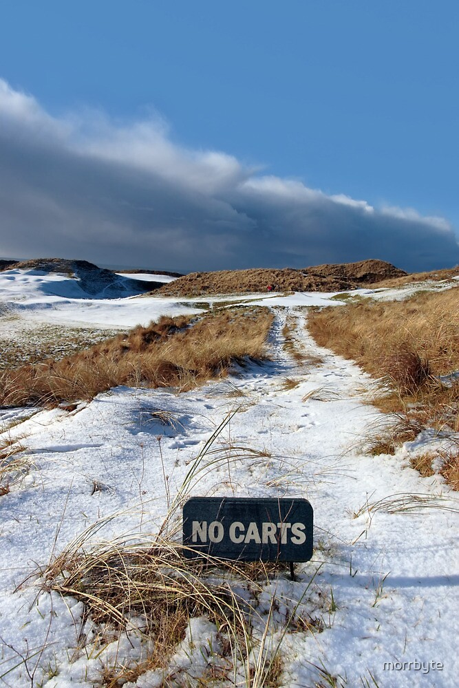 no carts sign on a snow covered links golf course by morrbyte