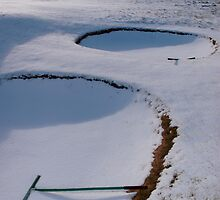 rakes in bunkers on a snow covered links golf course by morrbyte
