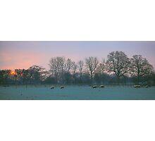 Sunrise05/12/2012 08:02:47 Photographic Print