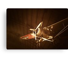 Beauty in the Air VI Canvas Print
