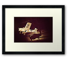 Beauty in the Air IX Framed Print