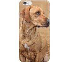 THE RHODESIAN RIDGEBACK - Iphone Case iPhone Case/Skin