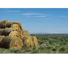 Hay bales in Montana Photographic Print
