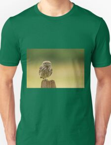 Little owl balancing  T-Shirt