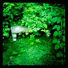 Overgrown Bench by alanmccormick