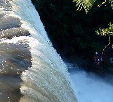 Iguazu Falls by Larry Glick