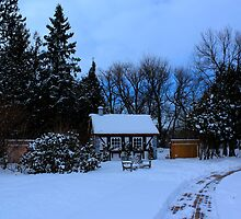 English Gardens (Winter View) by Larry Trupp