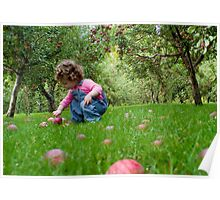 Apple Picking Poster