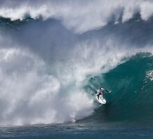 The Art Of Surfing In Hawaii 18 by Alex Preiss