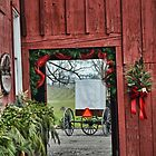 Amish Buggy-White by Val Dunn