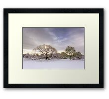 Winter is Coming 2 Framed Print