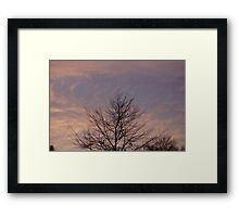 Home Nature Framed Print