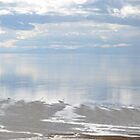 Bison Point Antelope Island full Panoramic by Val Dunn
