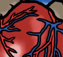 Anatomically Correct Heart Sticker