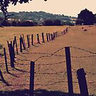 Vintage Fence and Field by Liam O&#x27;Reilly