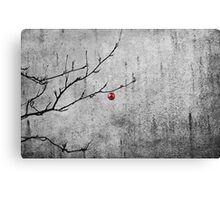 Christmassy Mountain Ash Canvas Print