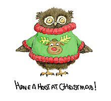 Have a Hoot at Christmas Photographic Print