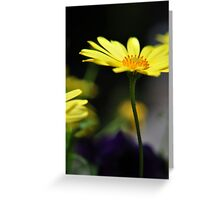 Tall Yellow Flower Greeting Card