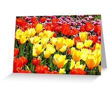 Floriade Greeting Card
