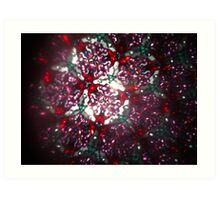 Kaleidoscope 14 Art Print