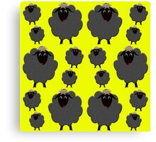 A whole herd of Black Sheep Canvas Print