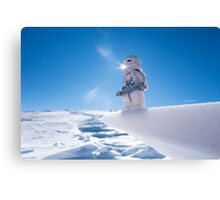 I think carbon-freeze would be warmer than this Canvas Print