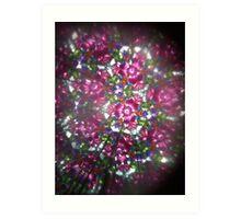 Kaleidoscope 28 Art Print