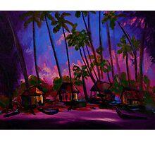 Ppalu by Florida Artist John E Metcalfe Photographic Print